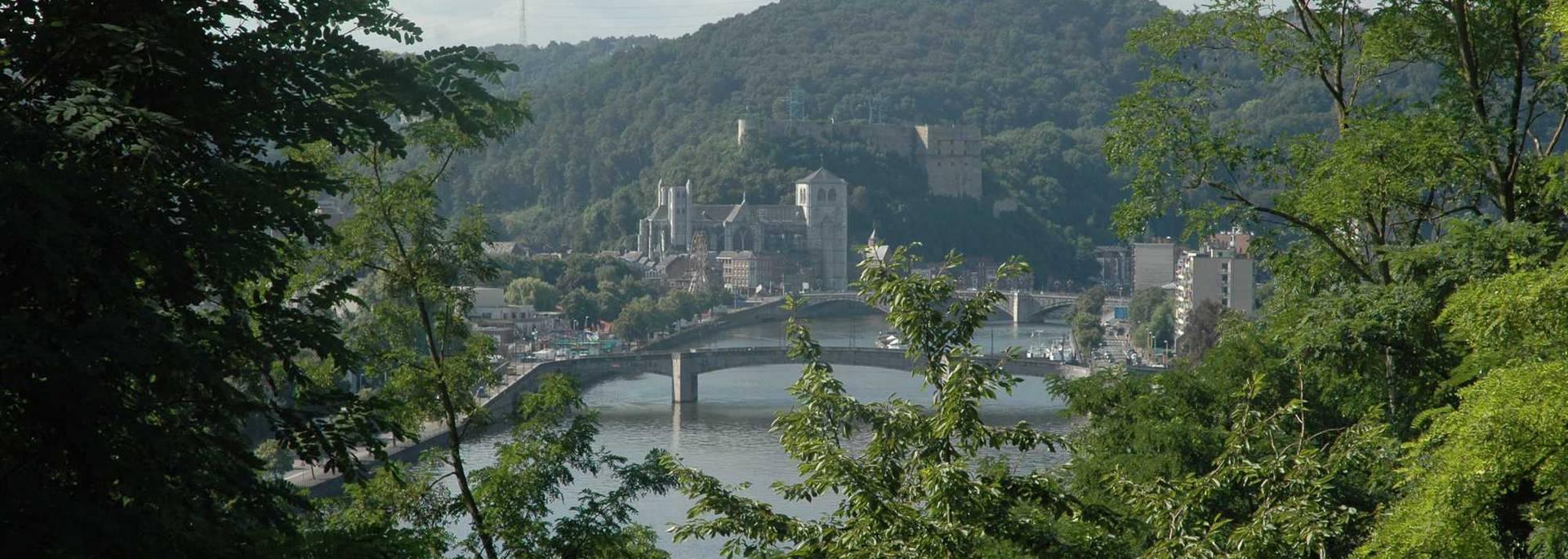 Panoramique sur la ville de Huy
